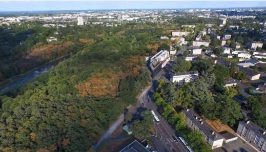 Rives de l'étang Saint Nicolas - Quartier Belle Beille, où un Immeuble à Vivre Bois de 10 étages verra le jour